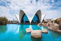Океанографический парк Валенсии.jpg