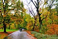 "Парк ""Софївка"", м. Умань, Черкаська обл., Україна.9.jpg"