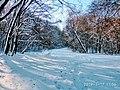 Региональный ландшафтный парк «Диканский» зимой 7.jpg