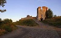 Селище - Черленківський замок (башта) DSC 7940.JPG