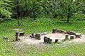 Сирецький дендрологічний парк 47.JPG