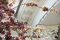 Цветущая яблоня. Елагин остров фото 3.jpg
