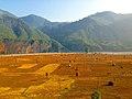 डोटी जिल्लाको खेतका फाँट.jpg