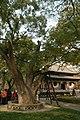 中國山西太原古蹟B287.jpg