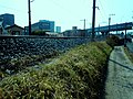南草津 - panoramio - warabi hatogaya.jpg