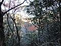 岐阜市 - panoramio (16).jpg