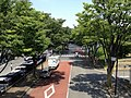 平尾小通り(歩道橋の上)-2013 - panoramio (2).jpg