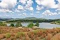 秋の農業文化公園の風景(フラワーガーデンから見た湖).jpg