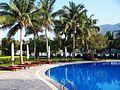 金棕榈酒店游泳池-流浪的狗狗 - panoramio.jpg