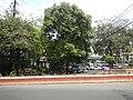03393jfBuildings West North Avenue Roads Edsa Barangays Quezon Cityfvf 08.JPG