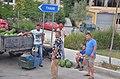 0584 Berat County.jpg