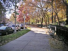 A walkway bounded by trees on the right with parked cars along a road on the left