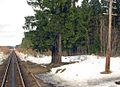 199 km stop Karelia.jpg