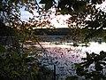 2007 11 02 - Russett Pond 21.JPG