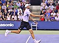 2013 US Open (Tennis) - Ivo Karlovic (9645483917).jpg