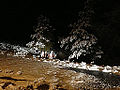 2014-12-13 03 28 51 Snow on pine trees at night in Spring Creek, Nevada.JPG