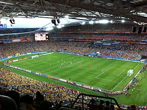2015 AFC Asian Cup Final - The 2015 final in Stadium Australia
