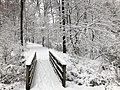 2018-03-21 12 11 32 View along a snow-covered walking path as it crosses a bridge in the Franklin Glen section of Chantilly, Fairfax County, Virginia.jpg