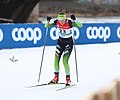 2019-01-12 Women's Qualification at the at FIS Cross-Country World Cup Dresden by Sandro Halank–300.jpg