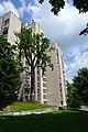 80-361-5031 Kyiv Yakunina Oak SAM 0193.jpg