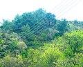 A@a askas village cyprus - panoramio (1).jpg