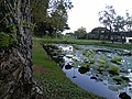AIT - pond.jpg