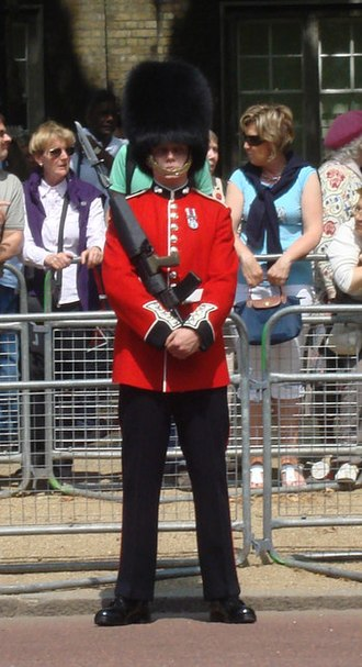 Tunic (military) - A soldier of the Grenadier Guards wearing a ceremonial tunic in 2009.