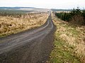 A straight road in Kershope Forest - geograph.org.uk - 691700.jpg