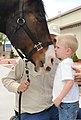 A young boy shares a tender moment with a horse during a visit to the stables at Fort Carson, Colo., April 22, 2012 120422-A-YY130-059.jpg