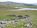 Above Llyn Gelli-gain - geograph.org.uk - 446165.jpg