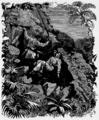 Aimard - Le Grand Chef des Aucas, 1889, illust 71.png