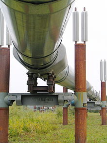 Alaska Pipeline Closeup Underneath.jpg