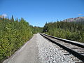 Alaska Railroad tracks.jpg