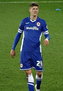 Alex Revell Cardiff City 2015.jpg