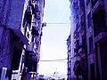 Alger, la blanche 6.jpg
