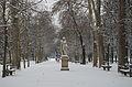 Allée du Jardin du Luxembourg sous la neige.jpg