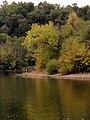Allegheny River Kittanning Fall 2016 - panoramio - Ron Shawley (26).jpg