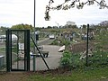 Allotments, Bridge End Farm - geograph.org.uk - 1266053.jpg