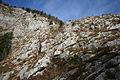 Altausseer See 78914 2014-11-15.JPG