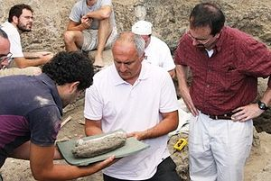 Dmanisi skull 5 - David Lordkipanidze (centre) on the archeological site at Dmanisi, 2010