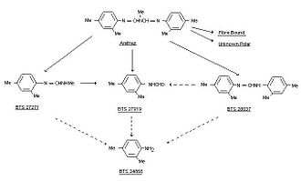Amitraz - Figure 4; Amitraz Metabolism in Plants