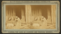 An Hour's search; or, Aunt Venue hunting for Florida fleas, from Robert N. Dennis collection of stereoscopic views 2.png