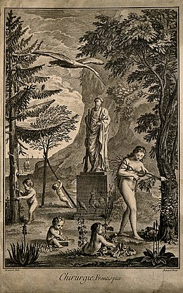 An allegory of surgery. Engraving by R. Benard after B.L. Pr Wellcome V0007554.jpg