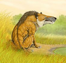 Dessin d'Andrewsarchus mongoliensis'