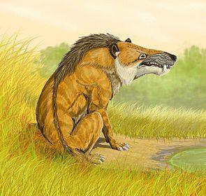 Andrewsarchus mongoliensis, Lebendrekonstruktion
