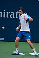 Andy Murray 2010 Forehand (7).jpg