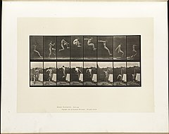 Animal locomotion. Plate 160 (Boston Public Library).jpg