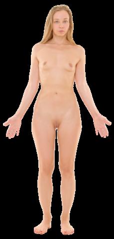 nude women in transparent saree