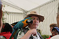 Ara ararauna -Lambeth Country Show -London-6a.jpg