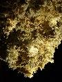 Aragonite chandelier, Limousis (1071903202).jpg